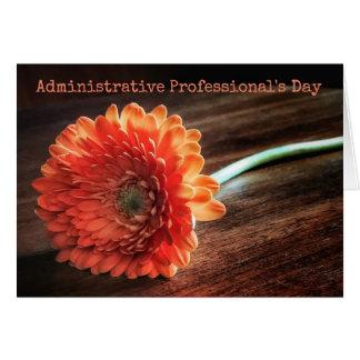De Dag van de administratieve Beroeps dankt u Briefkaarten 0