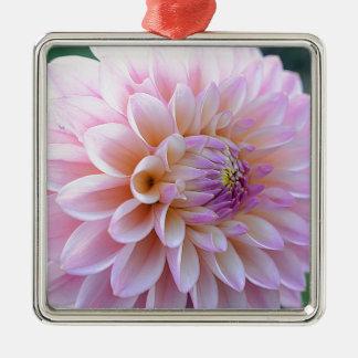 De Dahlia van Hued van de pastelkleur Zilverkleurig Vierkant Ornament