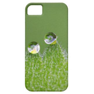 De Dalingen van het Water van de natuur verbinden Barely There iPhone 5 Hoesje