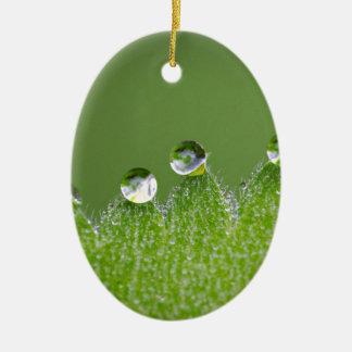 De Dalingen van het Water van de natuur verbinden Keramisch Ovaal Ornament