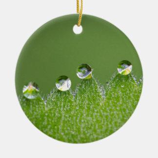 De Dalingen van het Water van de natuur verbinden Rond Keramisch Ornament