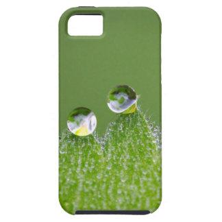 De Dalingen van het Water van de natuur verbinden Tough iPhone 5 Hoesje