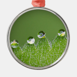 De Dalingen van het Water van de natuur verbinden Zilverkleurig Rond Ornament