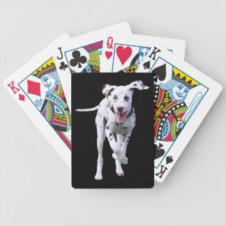 De Dalmatische leuke mooie foto van de puppyhond,  Bicycle Speelkaarten