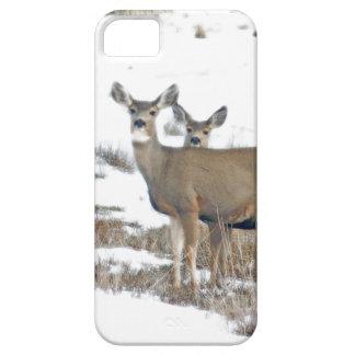 De Dieren Fawns van het Wild van de Herten van Barely There iPhone 5 Hoesje