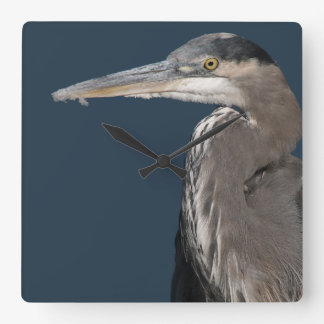 De Dieren van het Wild van de Vogels van de reiger Vierkante Klok