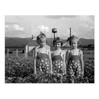 De Dochters van de landbouwer, 1939 Briefkaart