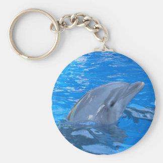 De Dolfijn Keychain van Bottlenose Sleutelhanger