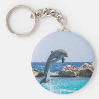 De Dolfijn van Bottlenose Sleutelhanger