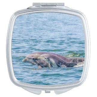 De Dolfijn van de Liefde van de moeder & de Make-up Spiegel