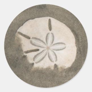 De dollar van het zand (Echinarachnius Parma) Ronde Sticker