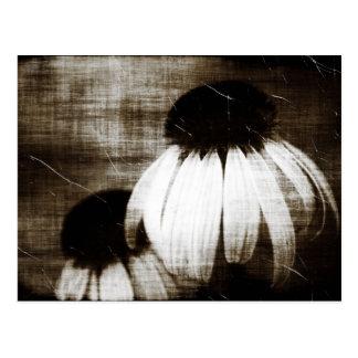 De Donkere Dromen van Echinacea Briefkaart