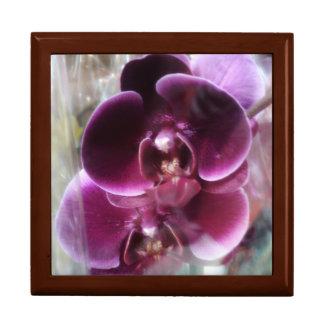 De donkere Paarse Orchideeën van de Mot Vierkant Opbergdoosje Large