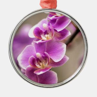 De donkerroze Ketting van de Bloem van de Orchidee Zilverkleurig Rond Ornament