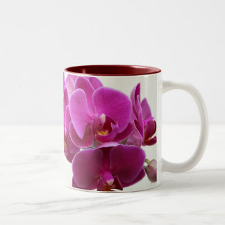 De donkerroze Mok van Orchideeën