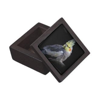 De Doos van de Gift van Cockatiel Premium Decoratiedoosje