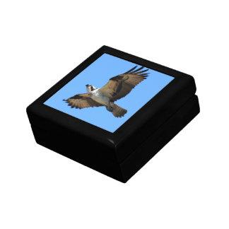 De Doos van de Gift van de Vogel van de visarend Decoratiedoosje