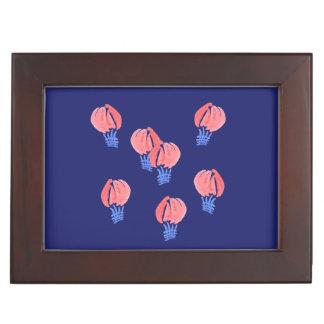 De Doos van de Herinnering van de Ballons van de Bewaardoosje