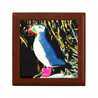 de doos van de papegaaiduikergift decoratiedoosje