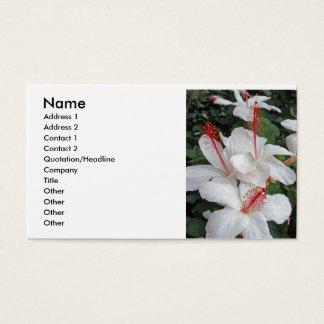 De Drievuldigheid van de hibiscus
