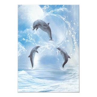 De dromen van Dolfijnen Kaart