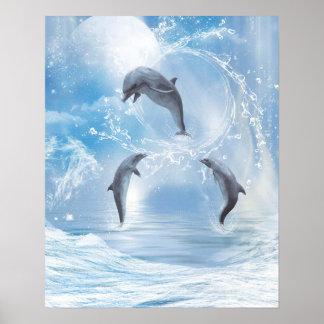 De dromen van Dolfijnen Poster