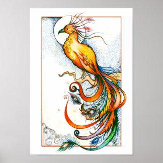 De Druk van de Vogel van de brand Poster