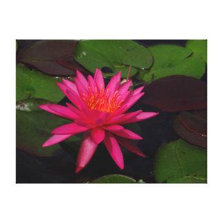 De druk van het canvas - roze waterlelie