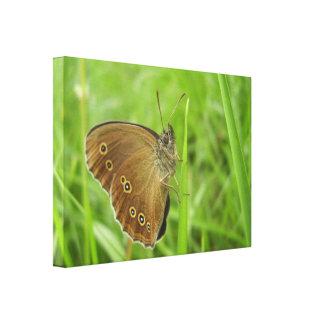 De Druk van het Canvas van de Vlinder van de lok