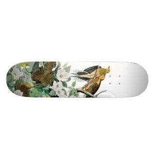 De Duif van de Schildpad van Carolina, Vogels van 18,7 Cm Mini Skateboard Deck