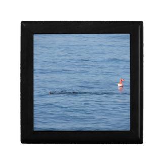 De duiker van het zee in scuba-uitrustingskostuum decoratiedoosje