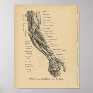 De Duitse Hand van het Wapen van de Druk van Poster