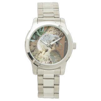 De Dutjes van de Kat van Meerkat, Groot Zilveren Horloge