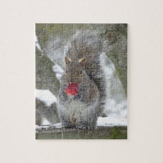 De eekhoorn van de aardbei puzzel