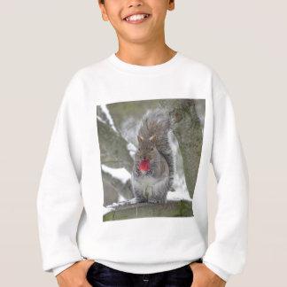 De eekhoorn van de aardbei trui
