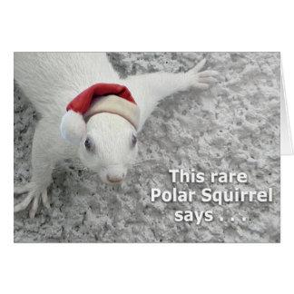 De Eekhoorn van Kerstmis Briefkaarten 0