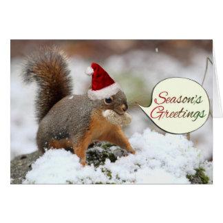 De Eekhoorn van Kerstmis in Sneeuw Briefkaarten 0
