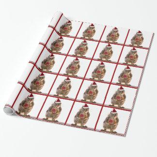 De Eekhoorn van Kerstmis met het Riet van het Inpakpapier