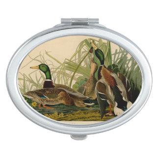 De Eend van de Wilde eend van Audubon Makeup Spiegels