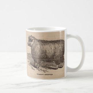 de eenjarige schapen Cotswold van de de 19de Koffiemok
