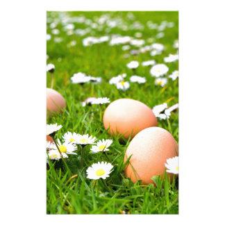 De eieren van de kip in gras met madeliefjes briefpapier