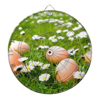De eieren van de kip in gras met madeliefjes dartbord