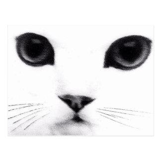 De Eigenschappen van de Kat van het kat Briefkaart