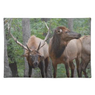 De Elanden van de stier in het Glimlachen van de Placemat