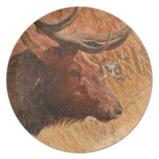 De Elanden van de stier Melamine+bord