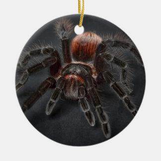 De enge Spin Arachnophobia van de Tarantula Rond Keramisch Ornament