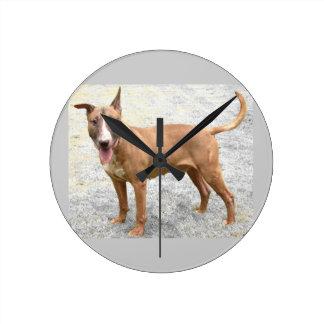 De Engelse Klok van de Muur van Bull terrier