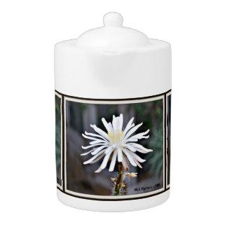 De enige Witte Pot van de Thee van de Bloei van de