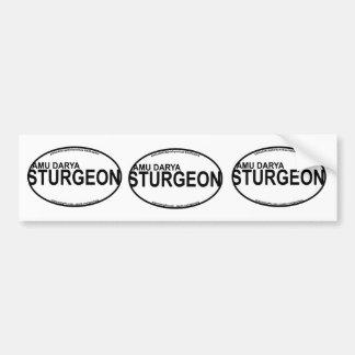 De Euro Stickers van de Steur van AmuDarya