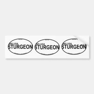 De Euro Stickers van de Steur van de beloega
